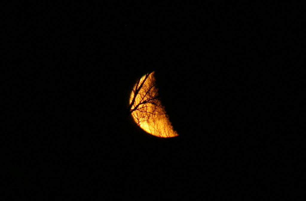 Mondschau