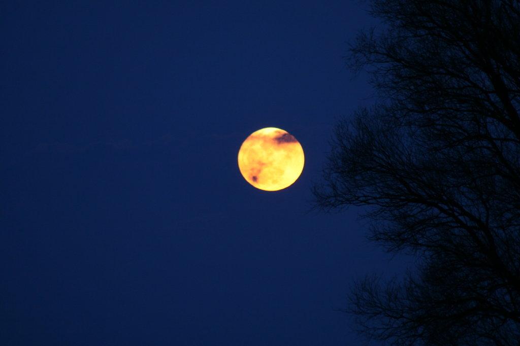 Rosenhagen Mondaufgang 8369