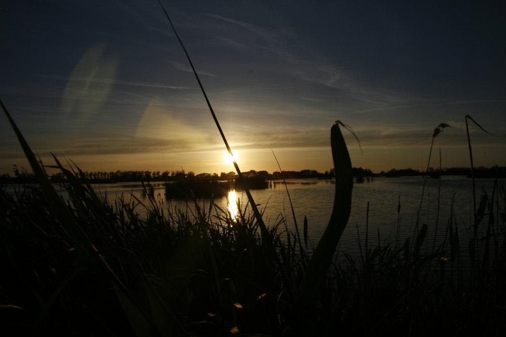 Naturschutzgebiet Anklamer Stadtbruch 8029