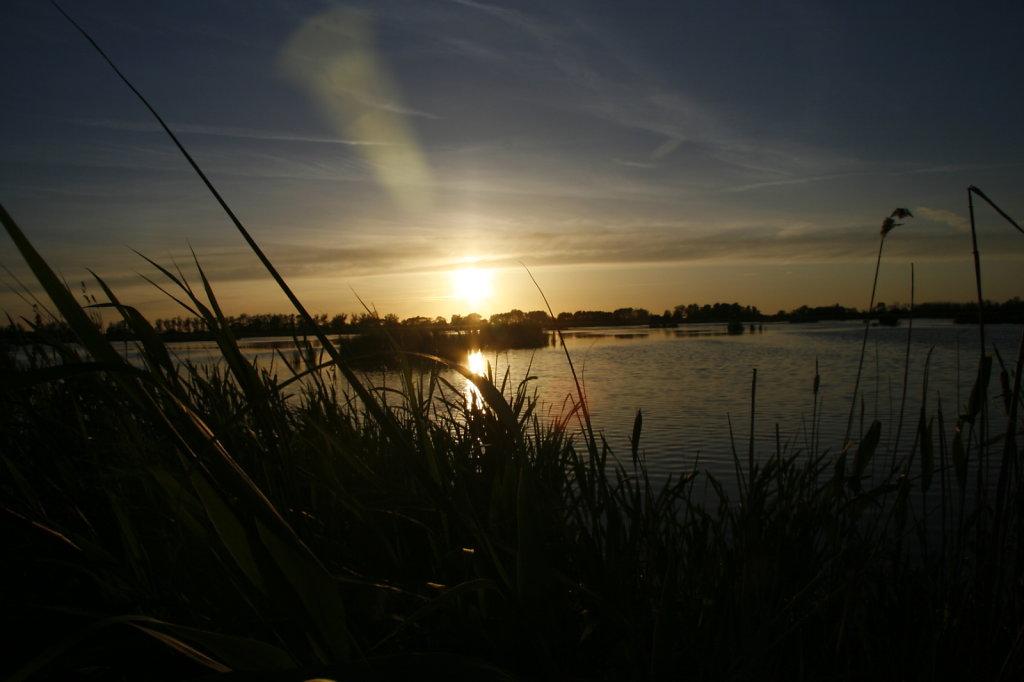 Naturschutzgebiet Anklamer Stadtbruch 8028