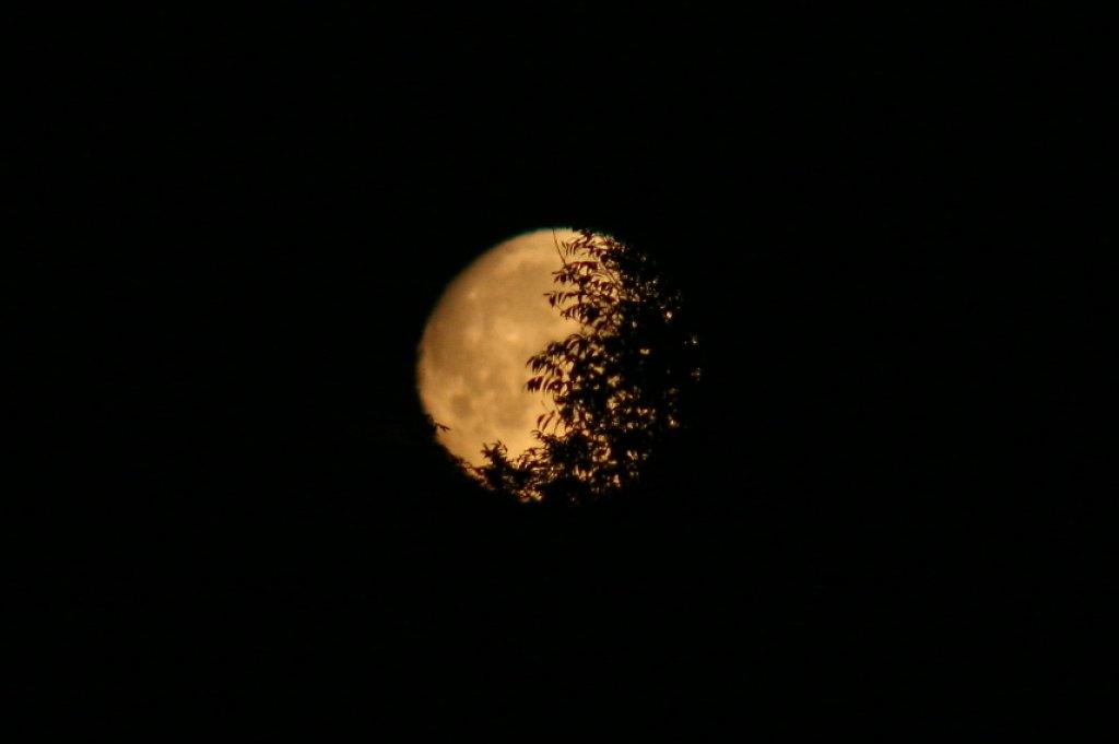 Monduntergang 1659.1