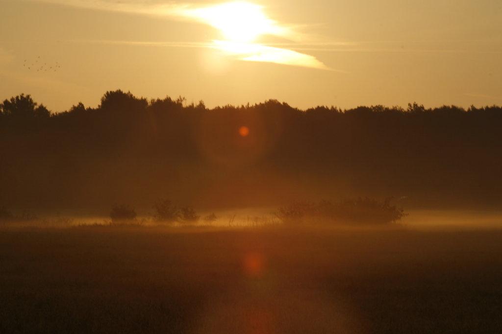 Sonnenaufgang  6224
