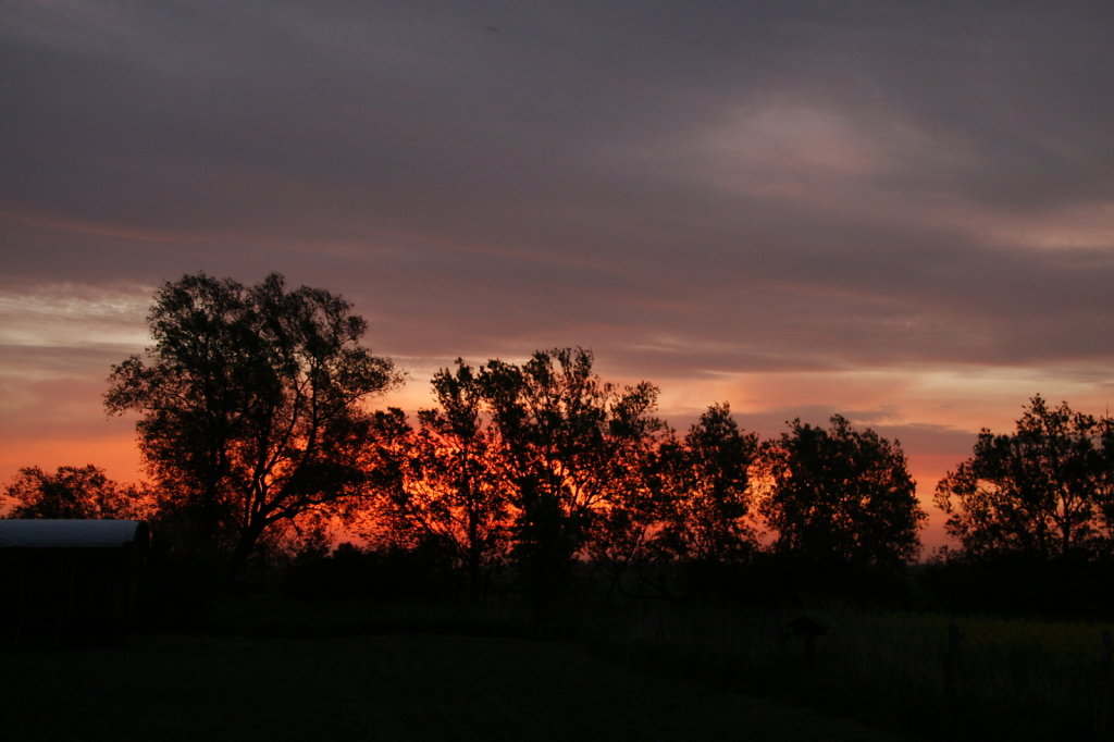 Geburtstags Sonnenaufgang 7808